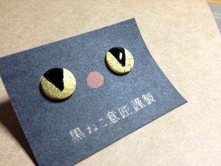 pin1.jpg